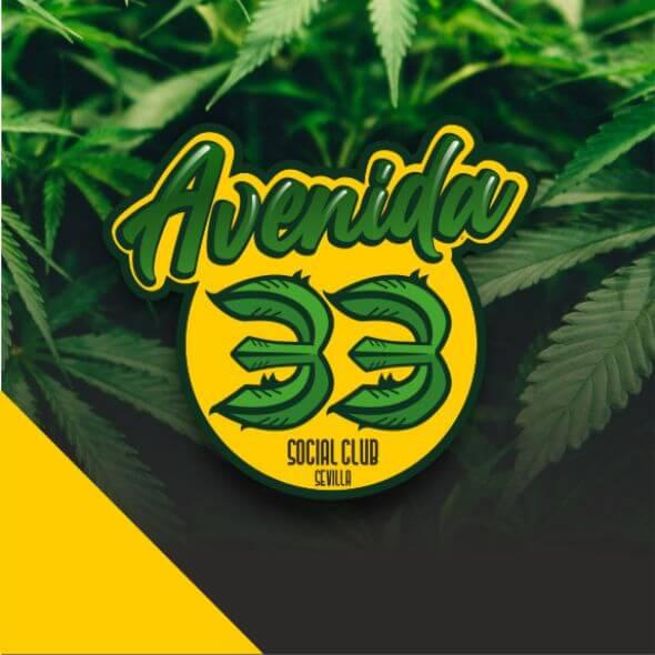 avenida33